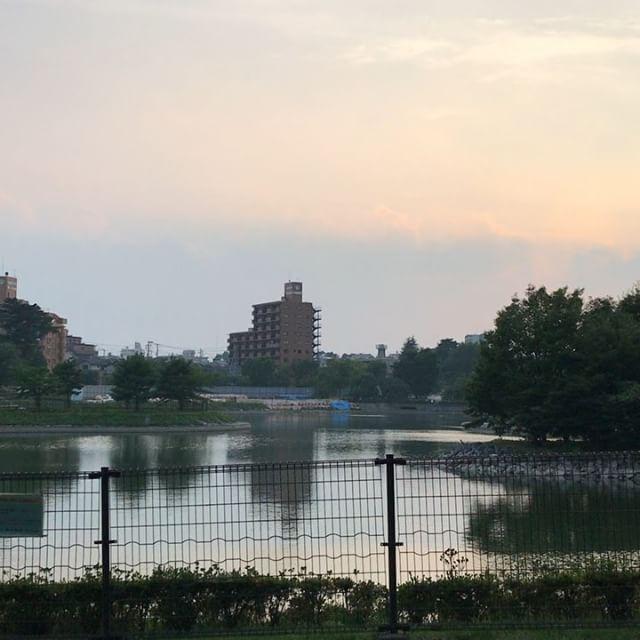 夕方の荒池公園。涼しいです。夕涼みにオススメです。#郡山市 #郡山 #公園 #prak #動画だよ #koriyama #koriyamacity #暑い #猛暑 #暑いね #夕涼み会 #夕涼み #夏 #summer #夕方 #sunset #sunset_vision #parkstreet #池